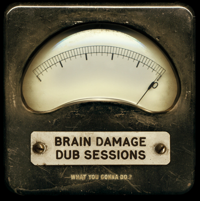 Brain Damage Dub Sessions