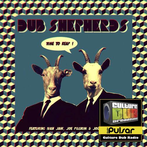 Dub Shepherds - Interview
