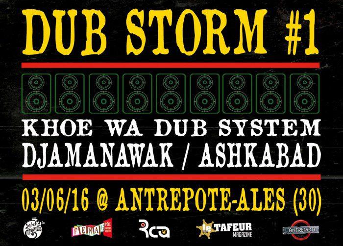Dub Storm #1