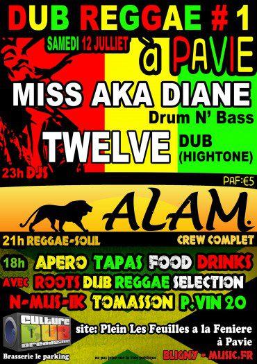 Dub Reggae Pavie #1
