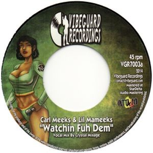 7inch Vibeguard Recordings - VGR003
