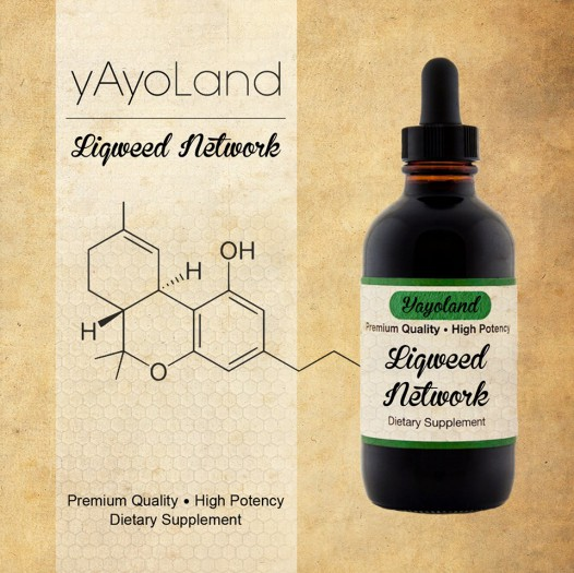 Yayoland - Liqweed Network