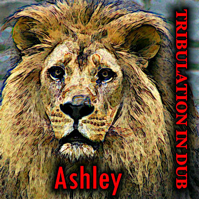 Ashley - Tribulation In Dub - Dubkey